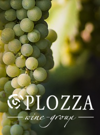 Plozza Wine-Group